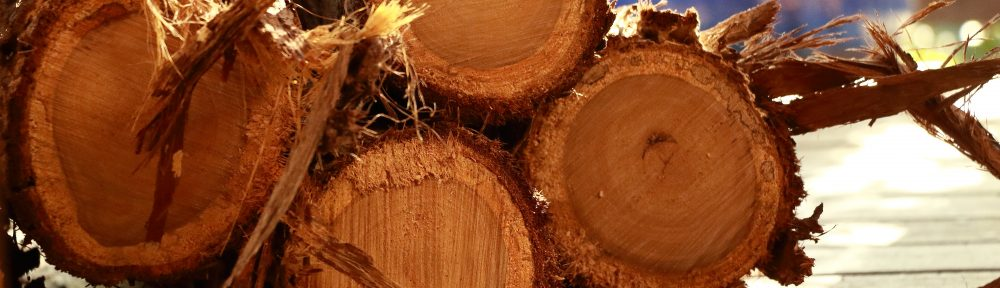 Olvar Wood